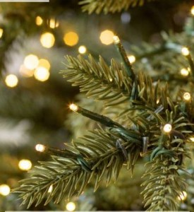 christmas, tree, interior, design, decorate, holiday