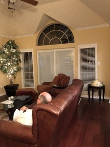 family room, living room, hooker furniture, fairfield chair, decorating, wainscotting, molding, white,window treatments, interior design, agreeable gray, sherwin williams, green, gray, paint, traditional, transitional, arched, console, iron, gold, brass, rug, sofa, lamps, lighting